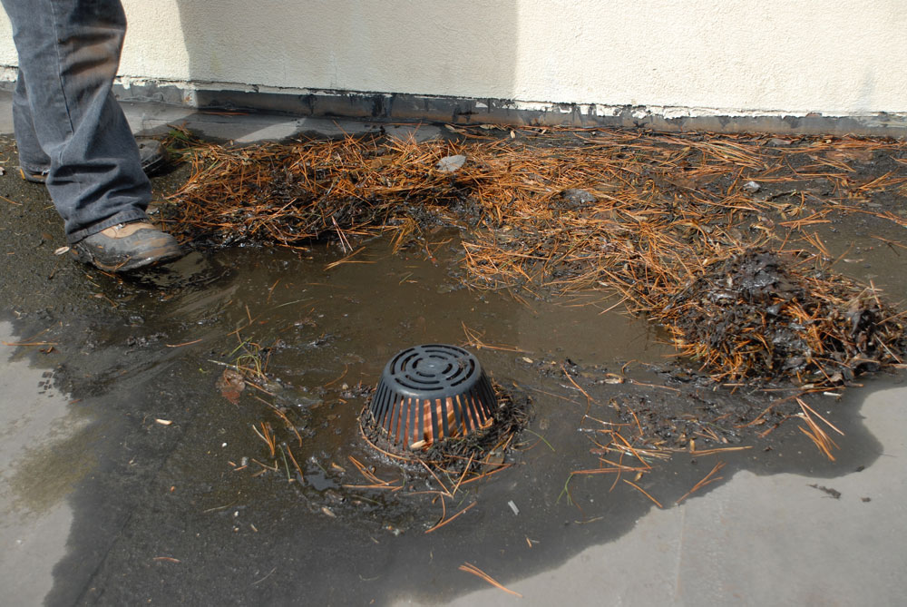 Flat Roof Drains - Roofs are Compromised Without Maintenance